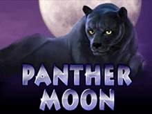 Panther Moon на зеркале