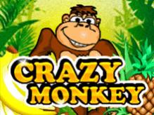 Автомат Crazy Monkey в Вулкан Удачи