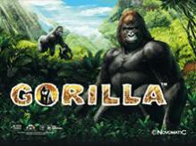 Автомат Gorilla на зеркале от Вулкана