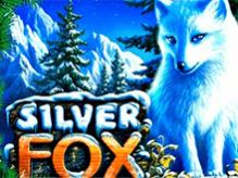 Автомат Silver Fox на Вулкан Удачи