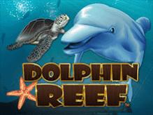 Демо автомат Dolphin Reef